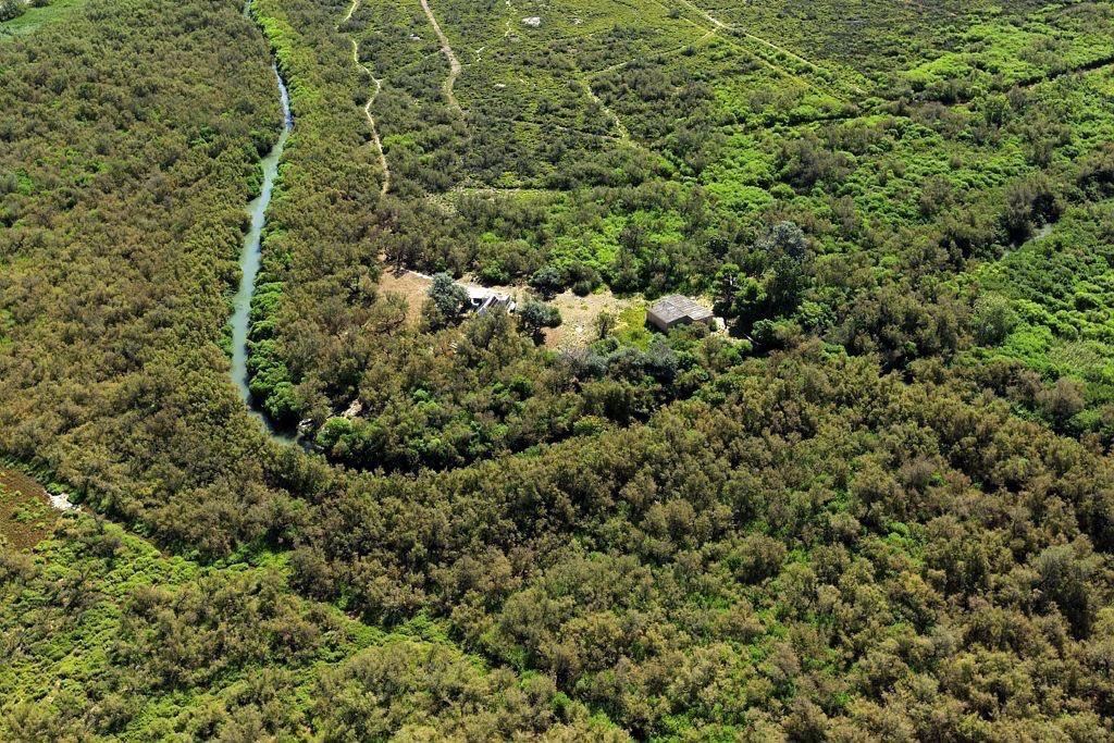 parc naturel regional de Camargue, Port Saint Louis du Rhone, They Saint Antoine Ermite