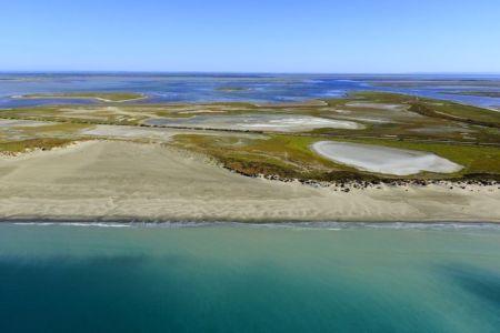 parc naturel regional de Camargue, Les Saintes Maries de la Mer, Baisse de la Blancarde, etang dit l'Imperial en arriere plan