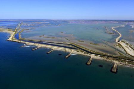 Parc Naturel Regional de Camargue, Arles, Canal des Emprunts, route du Semaphore, Estechons, Enfores