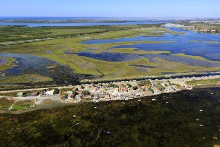parc naturel regional de Camargue, Port Saint Louis du Rhone, They du Saint Antoine Ermite, hameau les Cabanes de Carteau