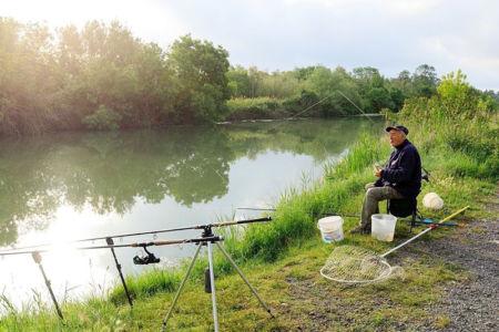 France, Bouches du Rhone (13), Parc Naturel Regional de Camargue, Arles, canal d'Arles a Bouc
