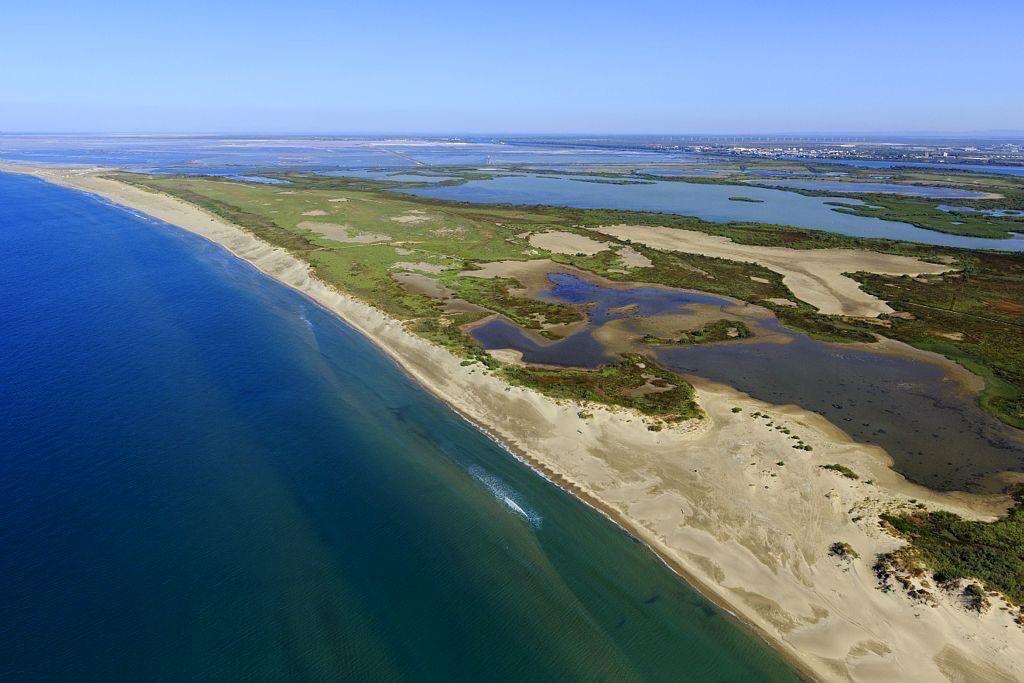 Parc Naturel Regional de Camargue, Arles, Salin de Giraud, Les Launes, etang de la Grande Palun en arriere plan