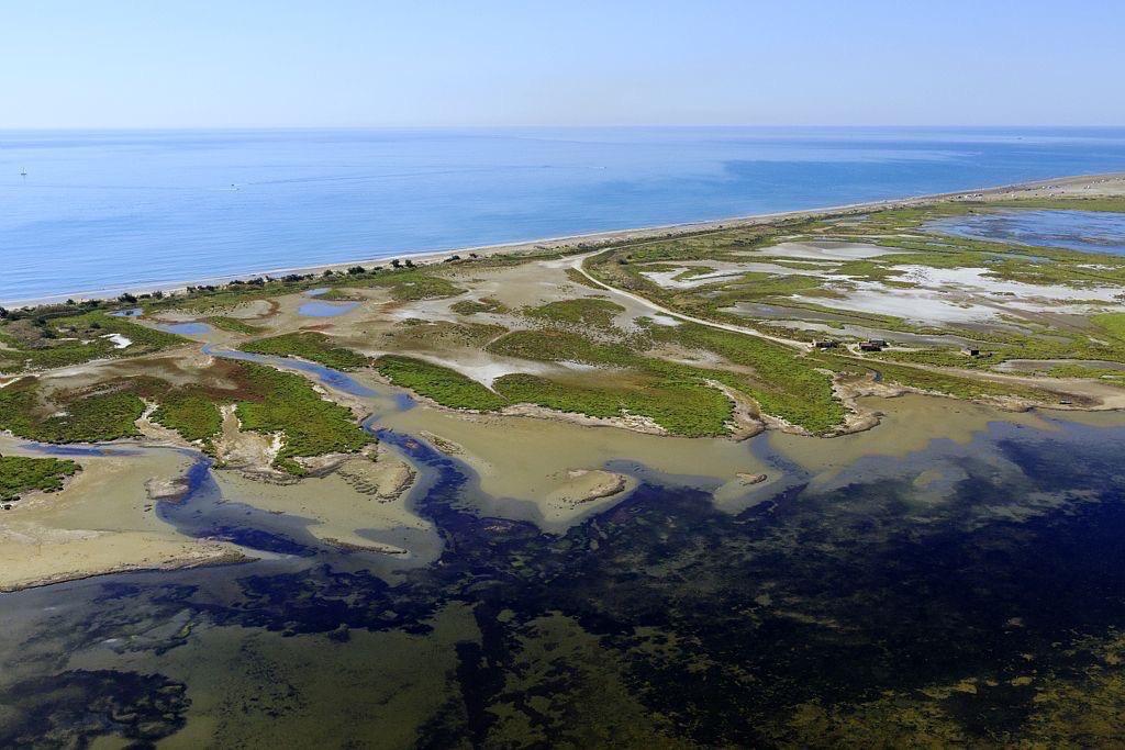 parc naturel regional de Camargue, Port Saint Louis du Rhone, They de la Balancelle