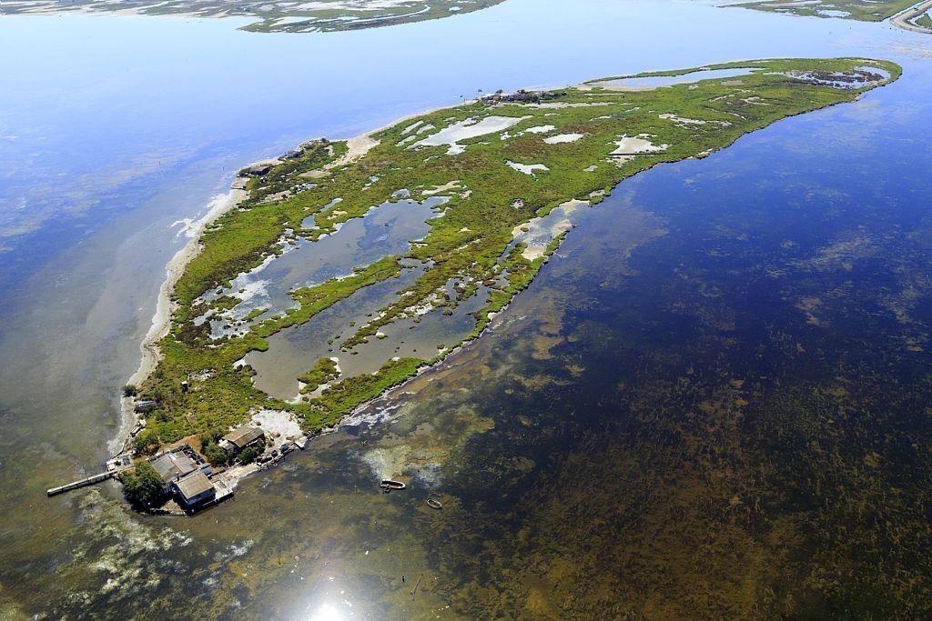 parc naturel regional de Camargue, Port Saint Louis du Rhone, They du Pegoulier, hameau les Cabanes du Levant