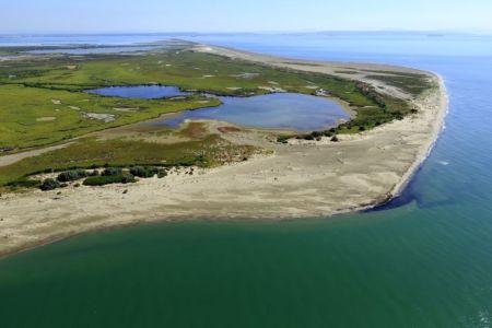parc naturel regional de Camargue, Port Saint Louis du Rhone, embouchure du Rhone