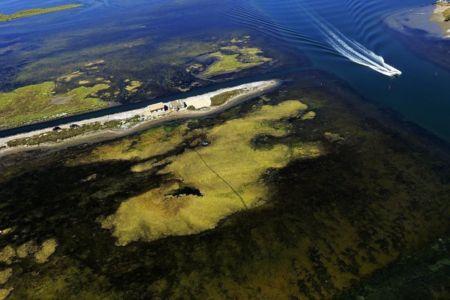 parc naturel regional de Camargue, Port Saint Louis du Rhone, They du Saint Antoine Ermite, sortie du port Napoleon