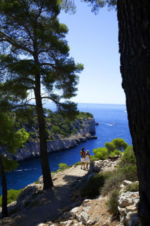 France, Bouches du Rhone (13), Parc national des Calanques, Marseille, 9e arrondissement, calanque de Port Pin, pins d'Alep