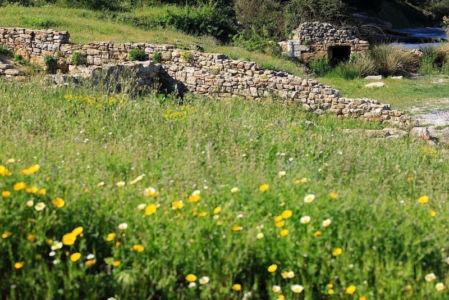 France, Bouches du Rhone (13), Cote Bleue, Martigues, site archeologique de Tholon