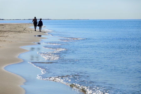 France, Bouches du Rhone (13), Parc Naturel Regional de Camargue, Arles, plage de Piemanson