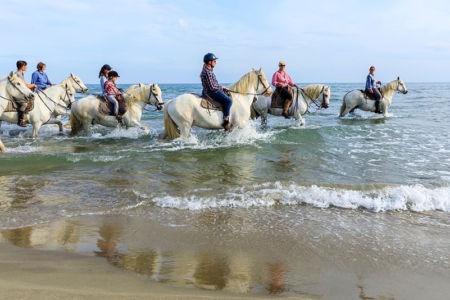 France, Bouches du Rhone (13), parc naturel regional de Camargue, Saintes Maries de la Mer, Les Quatre Maries, plage, randonnee equestre avec les chevaux de la Manade Pages